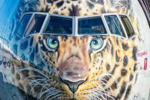"""Rossiya Boeing 777-312 EI-UNP """"Leolet"""", un leopardo en vuelo"""